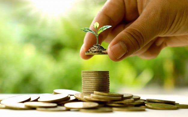 contul de tranzacționare în valută)